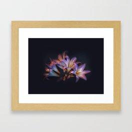 BellaDonna Framed Art Print