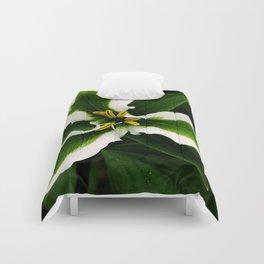 Green-striped White Trillium  (Disease can be beautiful) Comforters