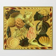 Shells of Sound Canvas Print