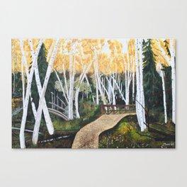 Trail Through the Birch Canvas Print