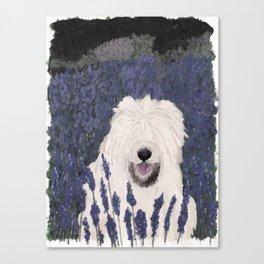 lavender dog Canvas Print