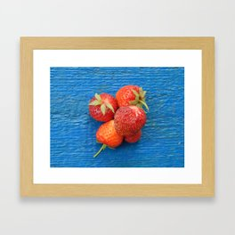 Collect strawberries in the garden and vegetable garden Framed Art Print