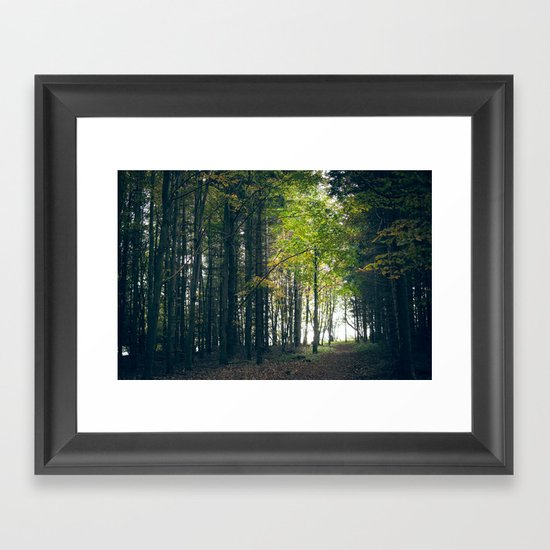 young tree Framed Art Print