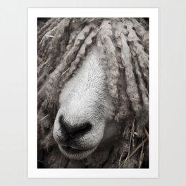 Dreaded Sheep Art Print