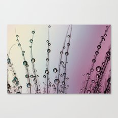 Feather Drops with Mauve Canvas Print