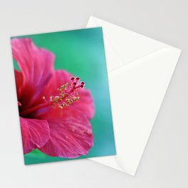 Pink Flower I Stationery Cards