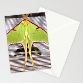 Easter Morning Visit From A Luna Moth Stationery Cards