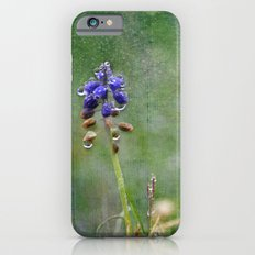 Solitary iPhone 6s Slim Case
