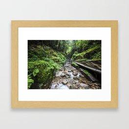 Flume Gorge New Hampshire Framed Art Print