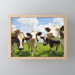 Four chatting cows Framed Mini Art Print