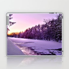 Frozen Voyage Laptop & iPad Skin
