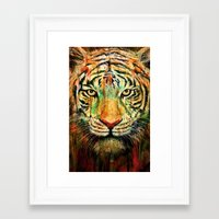 tiger Framed Art Prints featuring Tiger by nicebleed