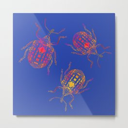 3 colorful snout beetles Metal Print