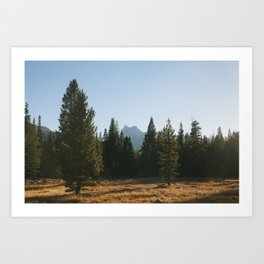 Cathedral Peak Art Print
