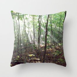 Hiking on the Dobson Trail Throw Pillow