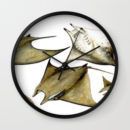 Chilean devil manta ray (Mobula tarapacana) Wall Clock