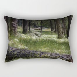 Mt. Laguna San Diego Ca Rectangular Pillow