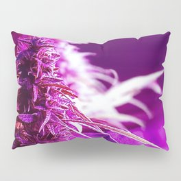 Cannabis Buds Under Pink LED Pillow Sham