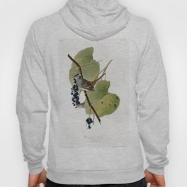 White-crowned Sparrow Hoody