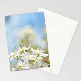 Floral 31 #flower Stationery Cards