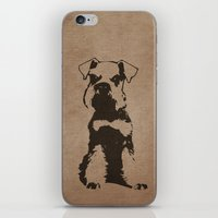 schnauzer iPhone & iPod Skins featuring Miniature Schnauzer by illustrious state
