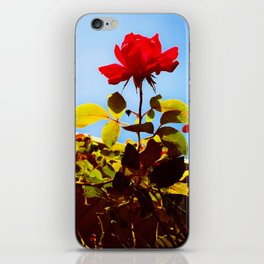 Timeless, Vintage Flowers iPhone Skin