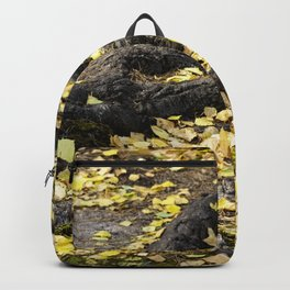 Summers Fall Backpack