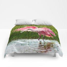 Roseate Spoonbill Comforters
