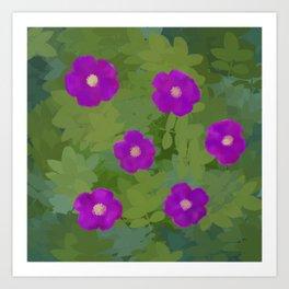 Flower Rosa Rugosa Art Print
