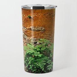 Little stream in autumn colors   landscape photography Travel Mug