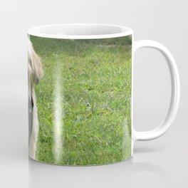 Copper the Havapookie Coffee Mug