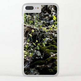 Mossy Stones Clear iPhone Case