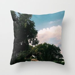 drive way on sun day Throw Pillow