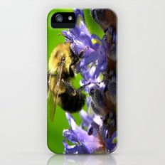 Bee all you can Bee Slim Case iPhone (5, 5s)