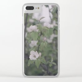 Apple quince flower Clear iPhone Case