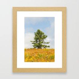 Meadow Warden Framed Art Print