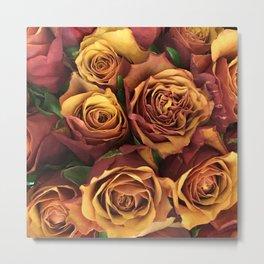 Terracotta Shabby Chic Roses Metal Print