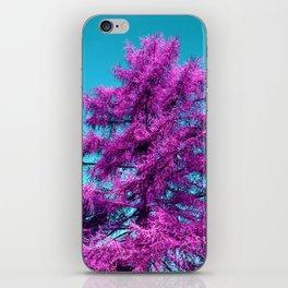 purple fir - tree I iPhone Skin