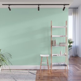 Dunn and Edwards 2019 Curated Colors Pale Cactus (Pastel Green) DE5673 Solid Color Wall Mural