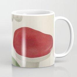 MUSHROOMS Agaricus Wild Edible Coffee Mug