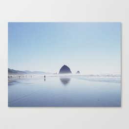 004 Canvas Print