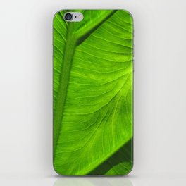 Tropical Green iPhone Skin