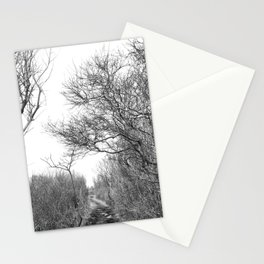 Winter Trail Stationery Cards