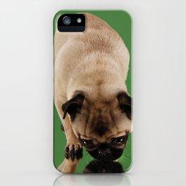 Pug Lara. iPhone Case