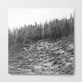 Debris Metal Print