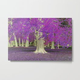 Purple Trees Metal Print