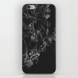 all of this passes iPhone Skin
