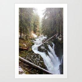 Sol Duc Falls Art Print