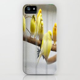 9 Canary Islands and a Colorín iPhone Case
