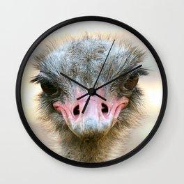 Whaddup? Ostrich Wall Clock